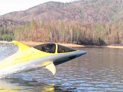 Submarino delfín