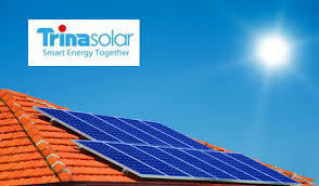 Paneles solares policristalinos Trina Solar 255W 24V