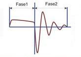 El grafico se muestra la forma del impulso del aparato DENAS