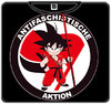 CAMISETA ANTIFASCHISTISCHE AKTION GOKU CHICO