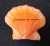 Pecten Glaber orange