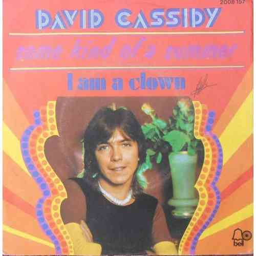 VINYL David cassidy some kind of a summer 1973
