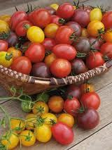 TOMATE CEREZA ARCOIRIS cherry mix 50 Semillas