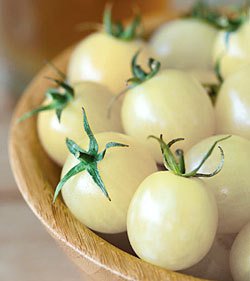 TOMATE CEREZA BLANCO white cherry 40 Semillas
