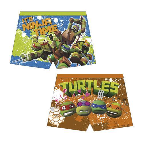 boxer Turtles 4-6-8