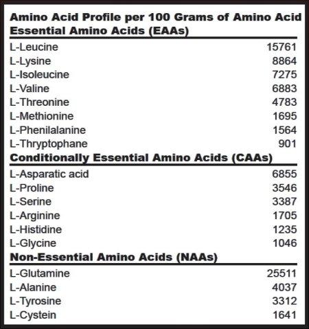 Power Pro Amino Profile - Biotech USA