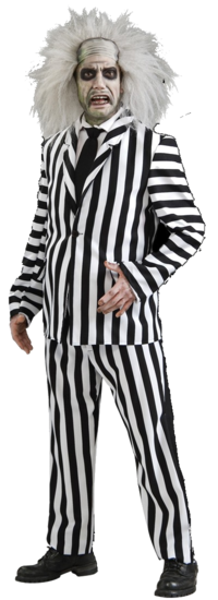 Beetlejuice costume suit - Halloween