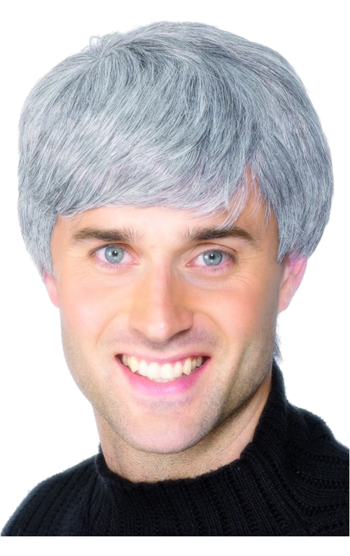 Short mens realistic modern wig grey