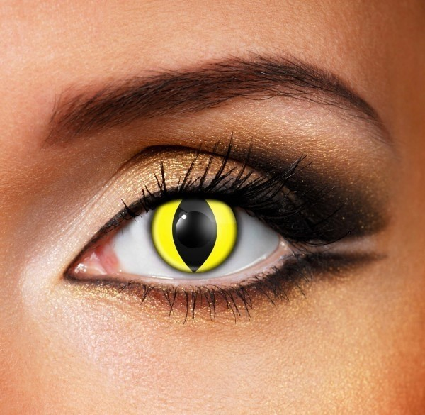 Yellow wolf Contact Lenses - Pair of lenses for wolves