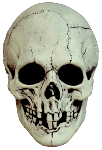 Skull black and white horror mask - Halloween