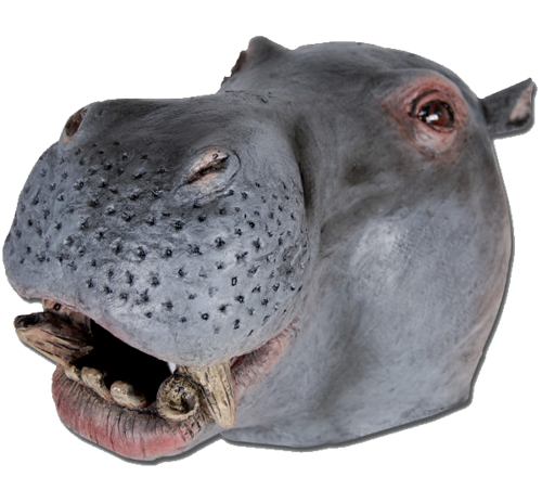 Latex Animal mask - Hippo