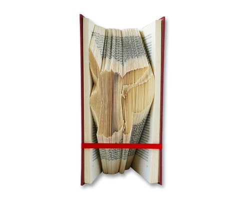 Eevee - Folded Book