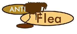 anti_flea_logo