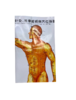 50014 Zhen Jiu Xue Wei Gua Tu 针灸穴位挂图 Acupuncture Wall Chart Set (3 Charts)