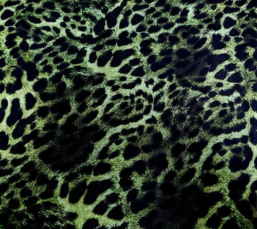 Leopard print green with black
