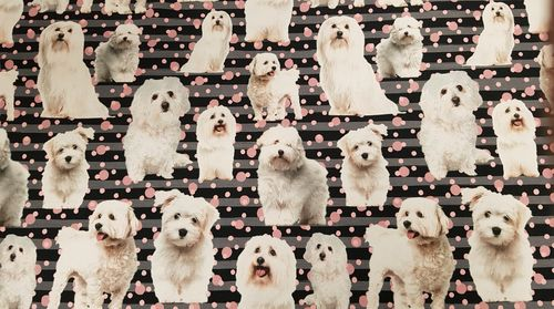 Digitale print Dogs stripes 271