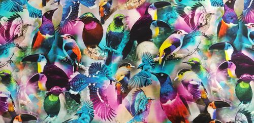 Digitale print 311 Beautiful Birds