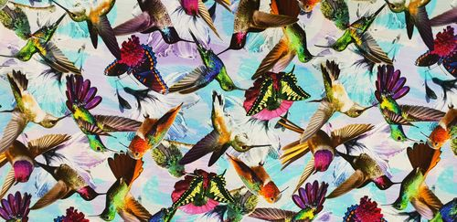 Digitale print Humming Birds